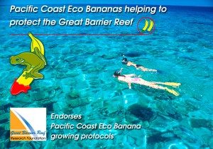 Great Barrier Reef Research Foundation Endorsement