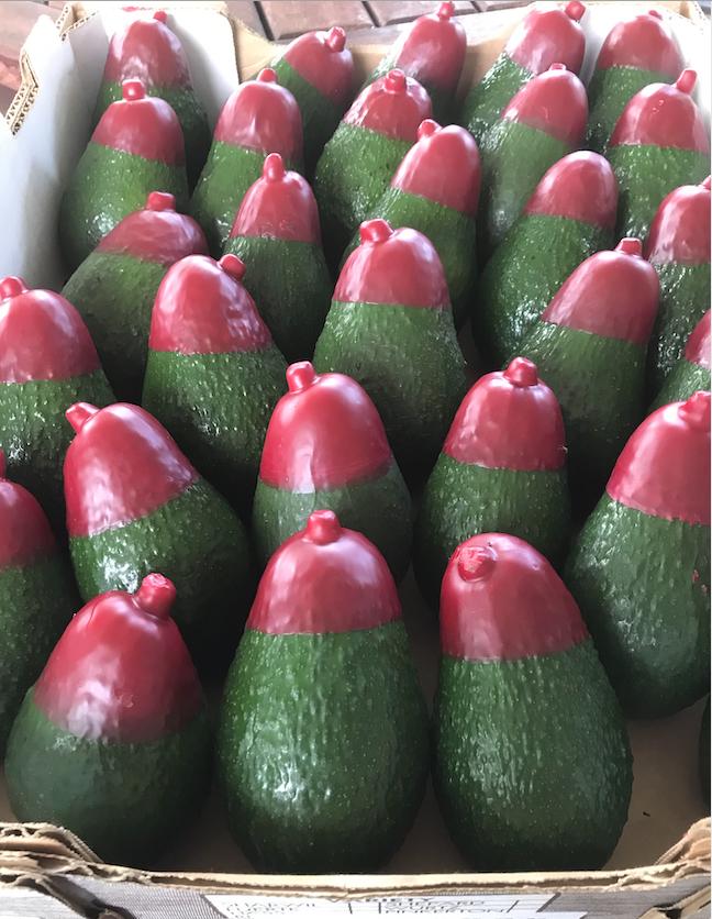 Red Tip Avocado